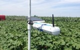 SapIP-IRT 無線紅外葉溫測量系統