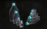 一次性细胞培养瓶,250ML,灭菌,普通型,滤膜盖