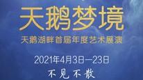 天鹅湖畔首届年度艺术展演——《天鹅梦境》演出预告