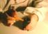 徕卡显微镜物镜的清洁方法
