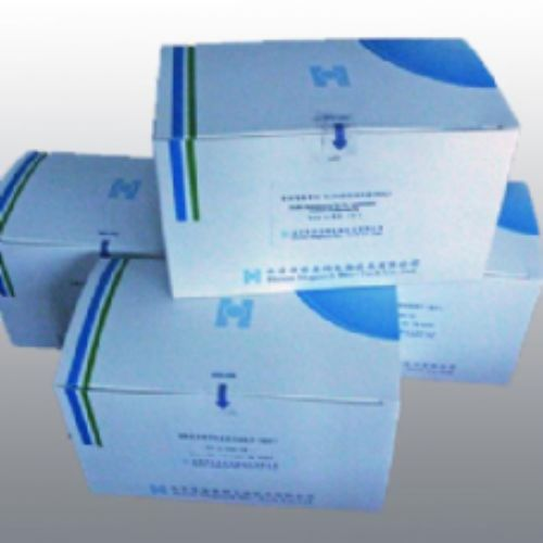 科研小鼠血小板活化因子(PAF)ELISA试剂盒