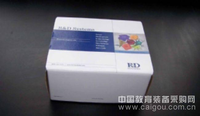 小鼠克拉拉细胞蛋白(CC16)ELISA试剂盒