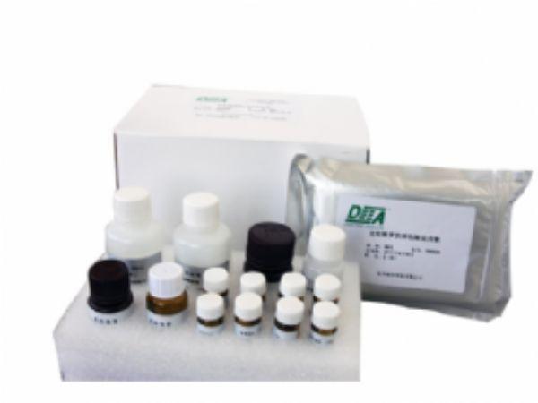 人组织蛋白去乙酰化酶(HD)ELISA试剂盒  规格