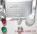 人硫酸类肝素(HS)Elisa试剂盒