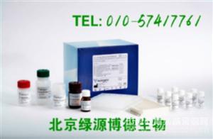 人前列腺素F Elisa kit价格,PGF进口试剂盒说明书