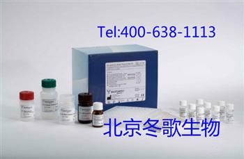 大鼠超敏C反应蛋白试剂盒,大鼠(hs-CRP)Elisa试剂盒