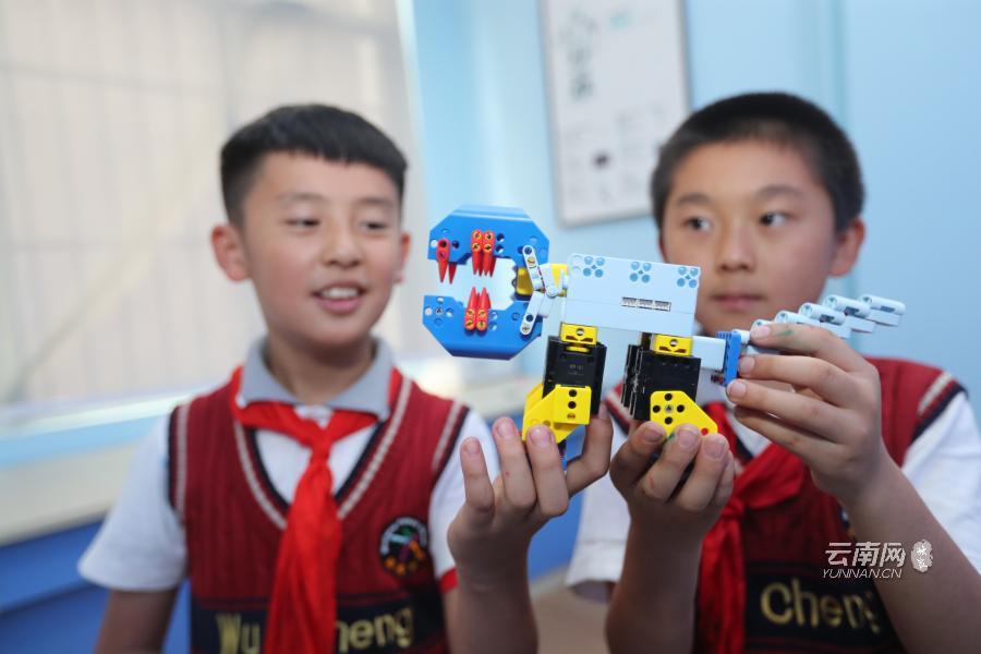 云南28所中小學校獲評全國青少年人工智能活動特色單位